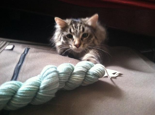 loki yarn
